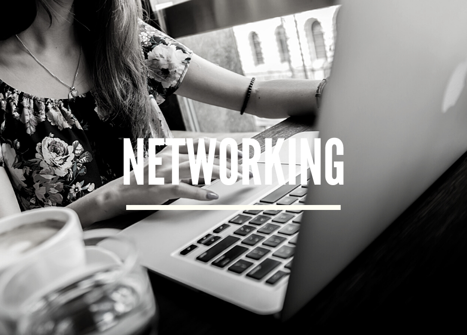 Small Business Web Designer – I Joined a Business Network